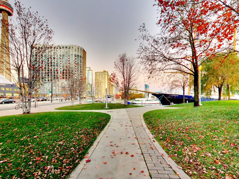 green space in the fall bordering 401 queens quay w