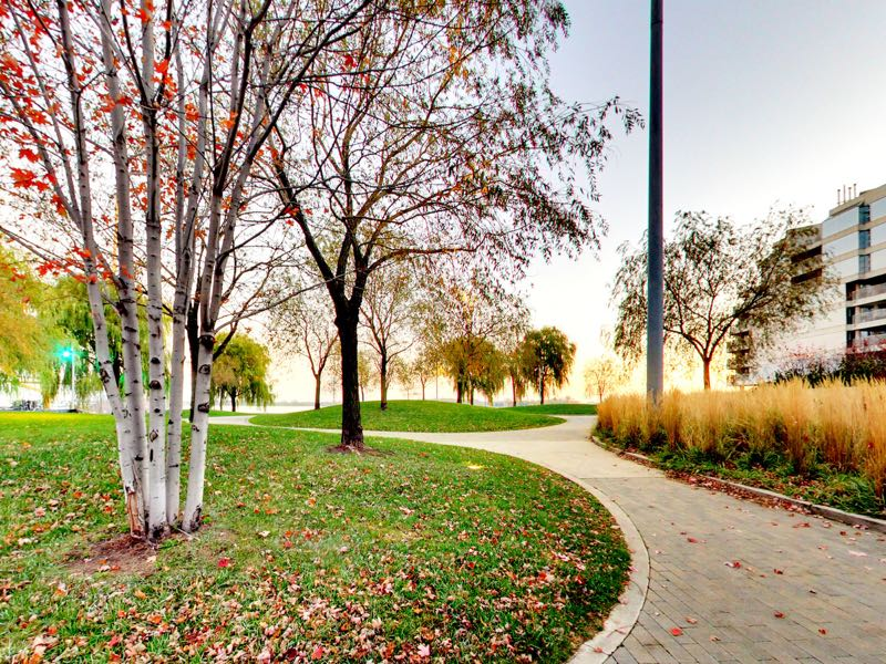 views of walking areas near 401 queens quay w